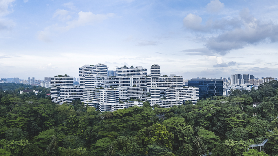 Singapore and the science of cities